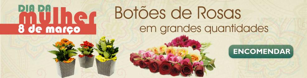 Entrega de Flores para o Dia das Mulheres - Atacado